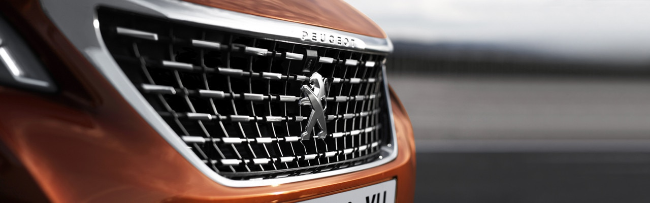 /image/23/5/new-3008-suv-style-exterior-grille.206235.jpg